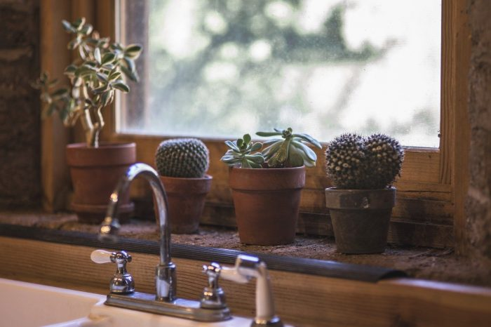 Toilet Cleaning Includes Windows, Taps And Faucets!